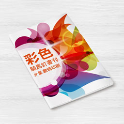 Full Colour Saddle Stitching Booklet